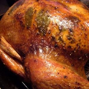 turkeyg