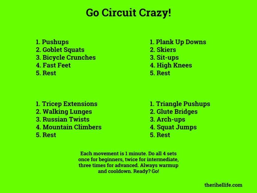 Circuit Crazy
