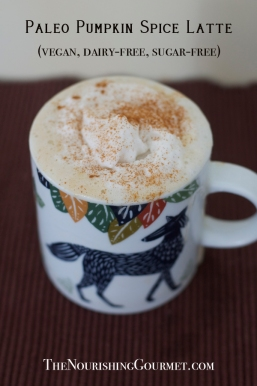 Paleo-Pumpkin-Spice-Latte-vegan-too